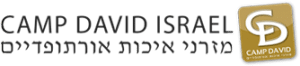 לוגו קמפ דיויד